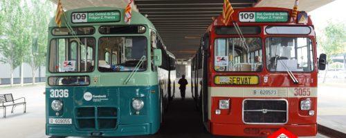 50 aniversari dels autobusos 3036 – 3055